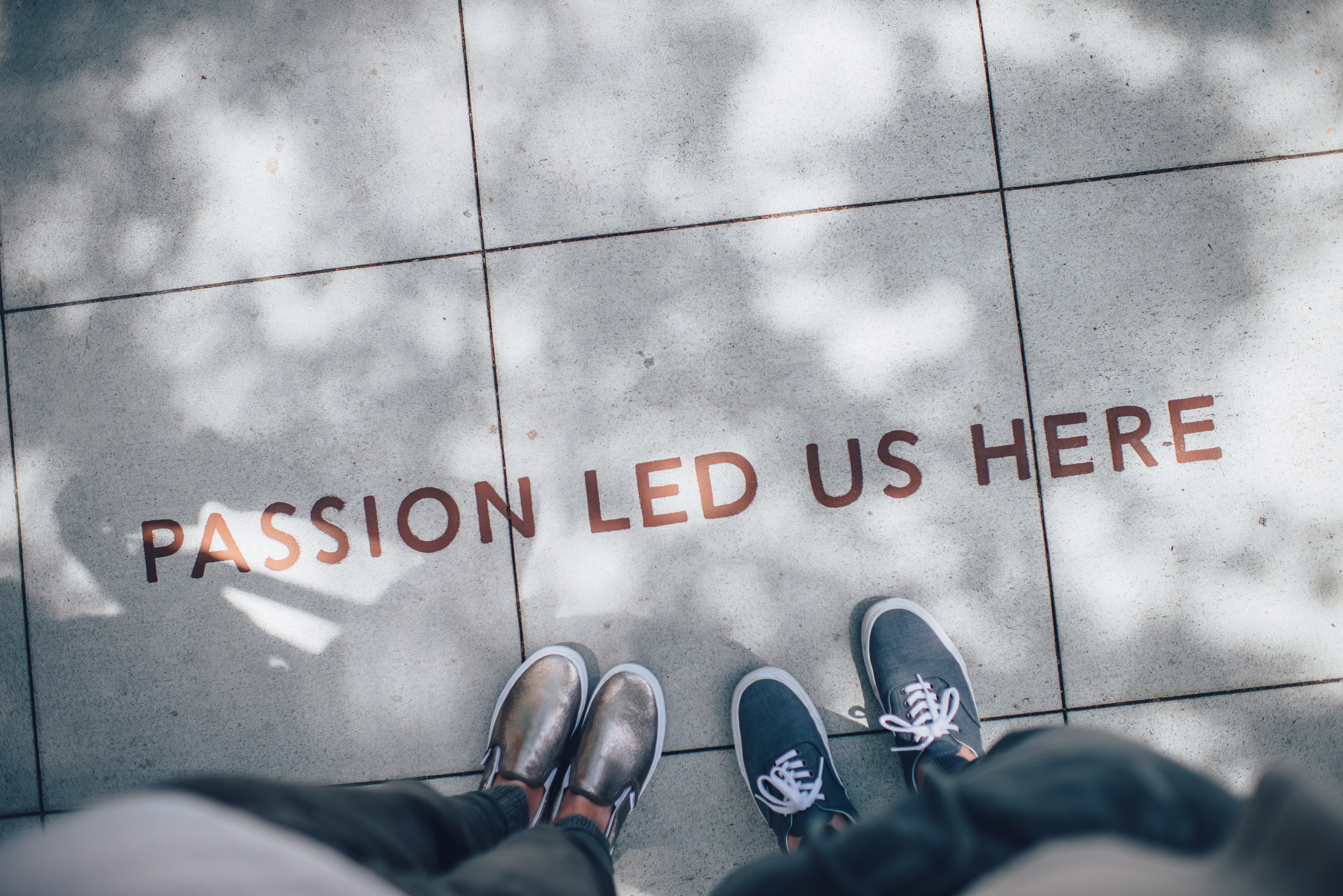 Passion led us here. Photo by Ian Schneider on Unsplash